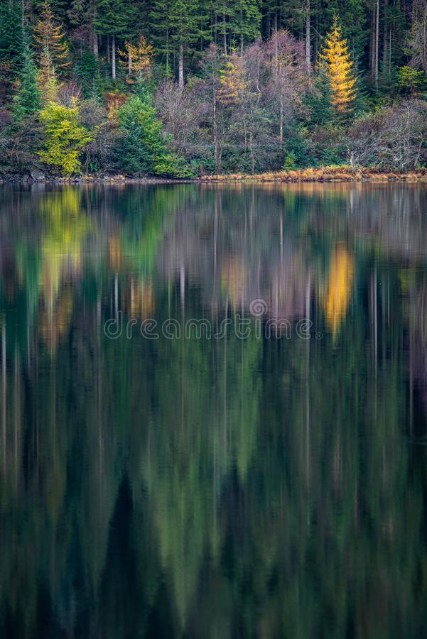 Autumn reflections on Loch Chon stock photos