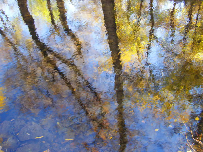 Autumn reflections in the water royalty free stock photo