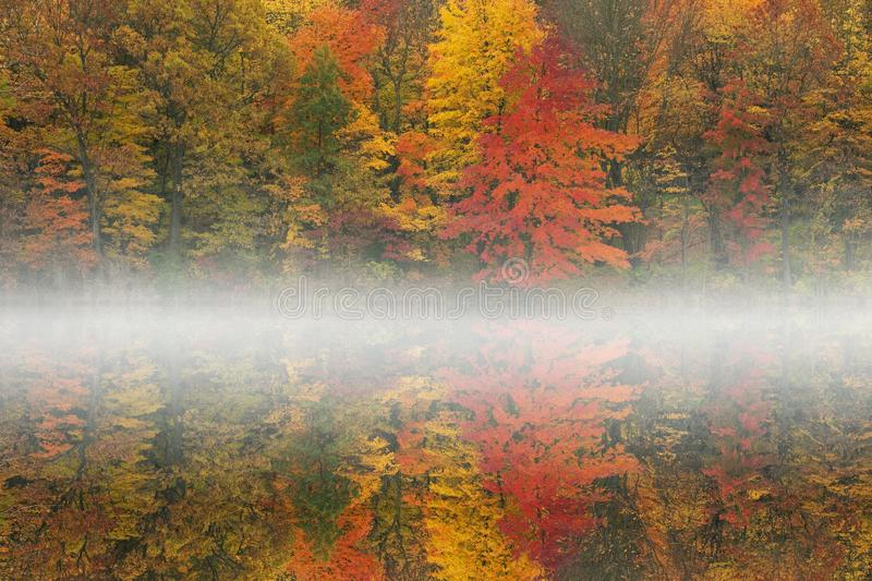 Autumn Reflections West Gilkey in Fog royalty free stock photos
