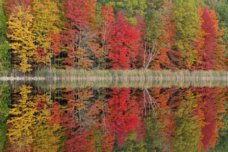 Autumn Reflections West Gilkey Lake royalty free stock photography