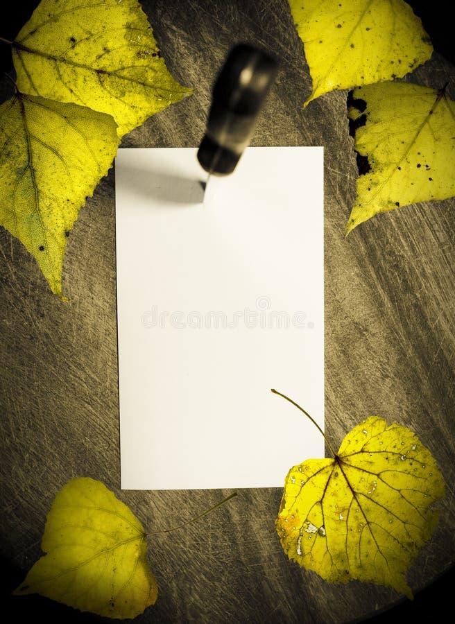 autumn reminder στοκ φωτογραφία