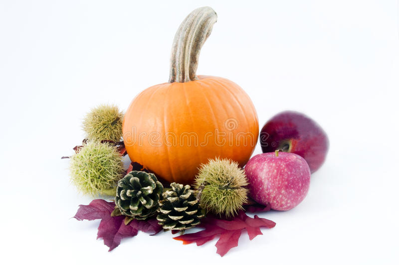 Autumn Riches. Deep orange pumpkin, spiny chestnut burrs, gold tipped pine cones, and red apples on autumn leaves show off fall's colorful riches stock photos