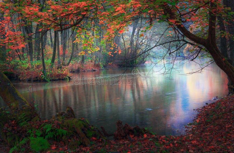 Autumn River imagen de archivo libre de regalías