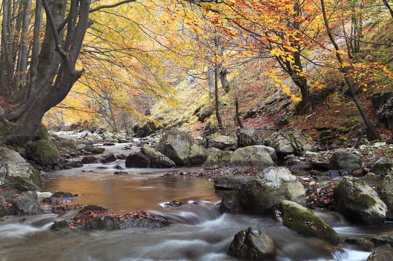 Download Autumn river stock photo. Image of rusty, autumn, natural - 11924464