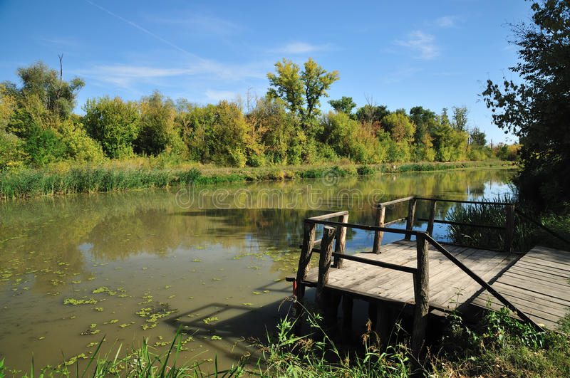 Autumn by river royalty free stock photography