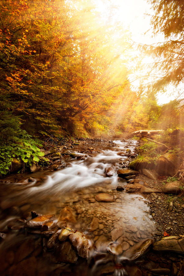 Free Autumn River Royalty Free Stock Image - 27538156