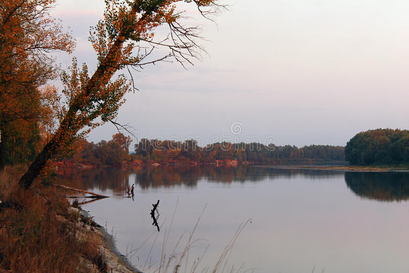 Autumn River foto de stock royalty free