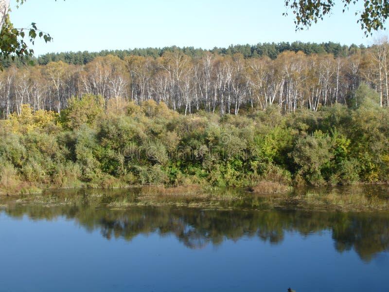 Autumn River photographie stock libre de droits