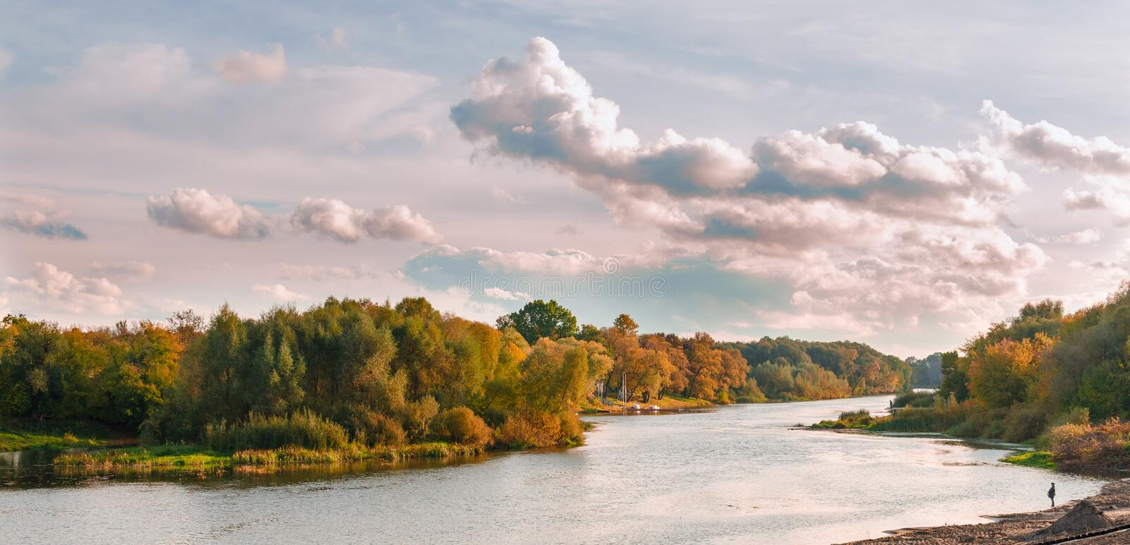 Autumn river in the background of a forest royalty free stock photo