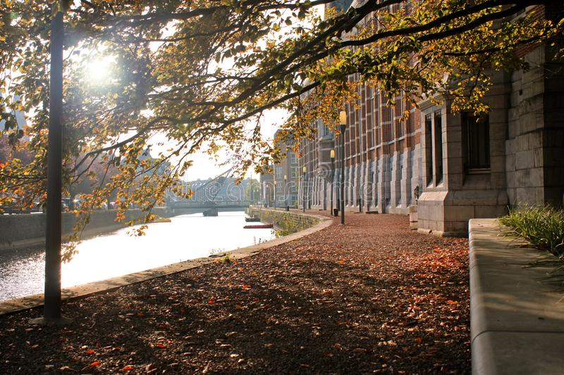 Autumn by the river in Dendermonde, Belgium. Sunny autumn view of a leaf strewn walkway on Dendermonde Waterfront and Oud Dender River, in East Falnders, Belgium stock images