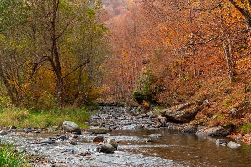 Autumn River Landscape Colors en nature photo stock