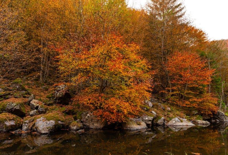 Autumn River Landscape Colors en nature image stock