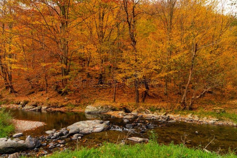 Autumn River Landscape Colors en nature images stock