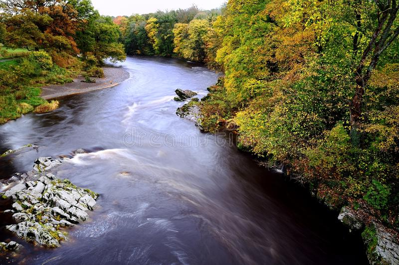 Autumn River. Autumn on the River Lune royalty free stock photography