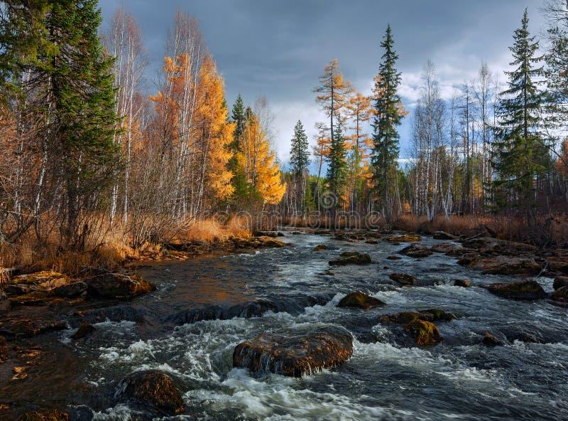 Autumn River Olha royalty-vrije stock fotografie