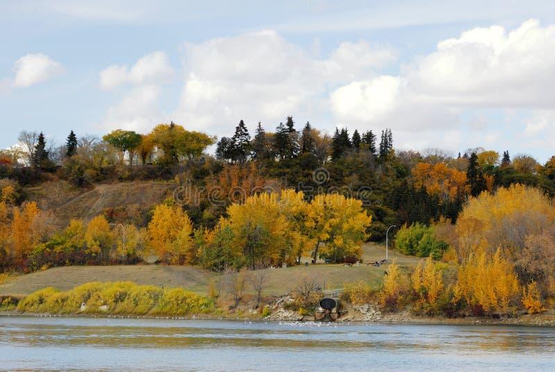 Autumn riverside scene in edmonton stock image