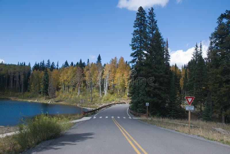 Download Autumn Road stock image. Image of horizontal, road, aspens - 3215451
