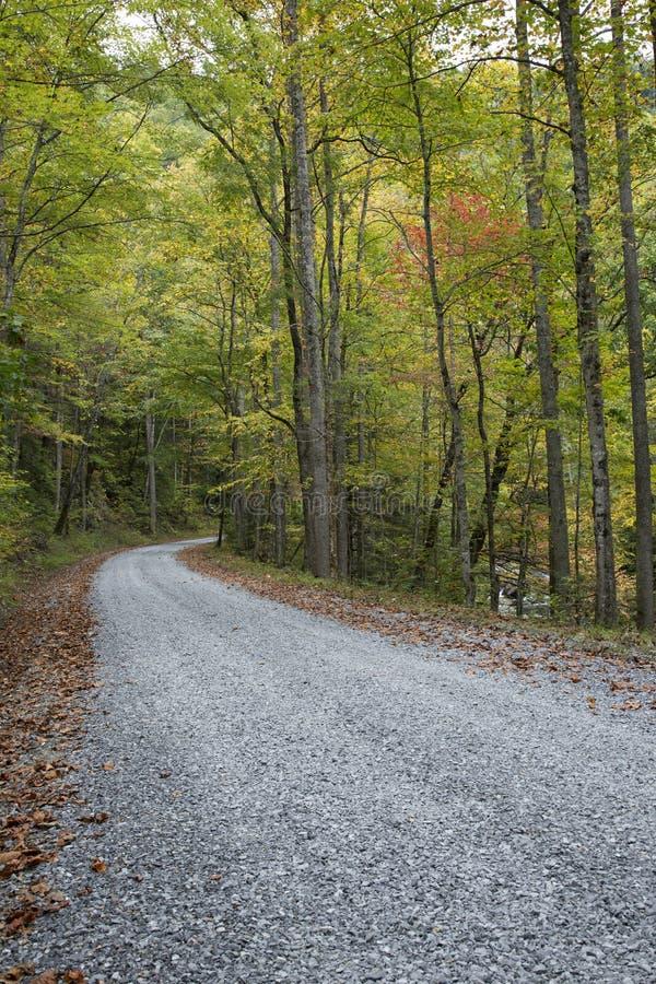 Download Autumn Road stock foto. Afbeelding bestaande uit toneel - 39104354