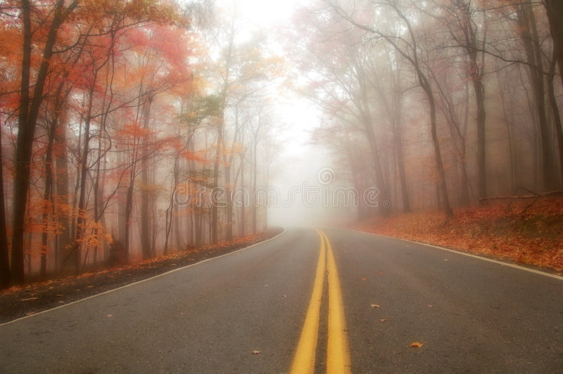 Download Autumn Road stock image. Image of road, scenic, rural - 5208899