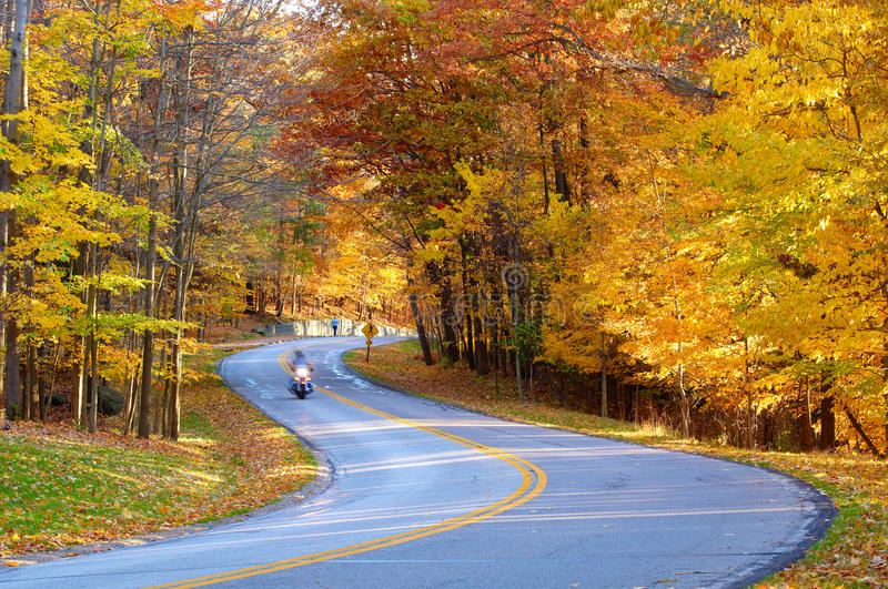 Download Autumn road with biker stock photo. Image of leaves, fall - 11596042
