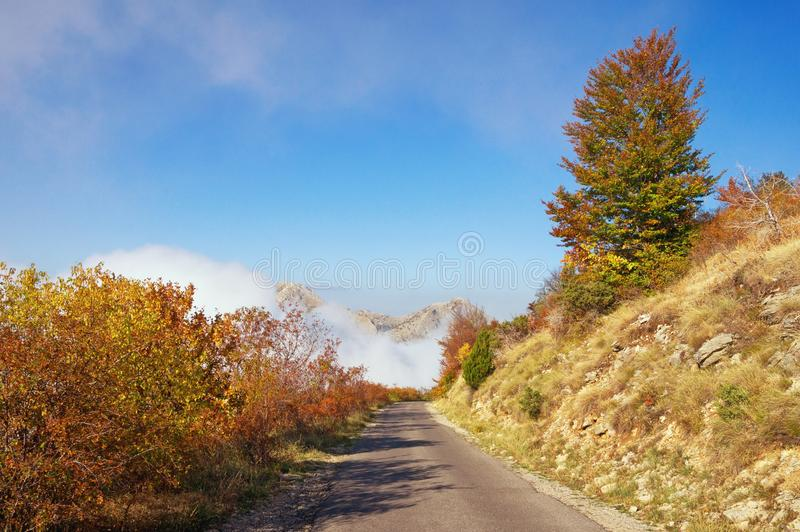 Autumn road in the mountains. Lovcen National Park, Montenegro royalty free stock photos