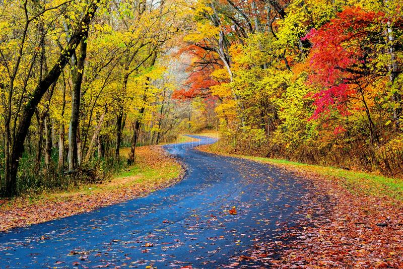 Autumn Road in Ohio stock afbeelding