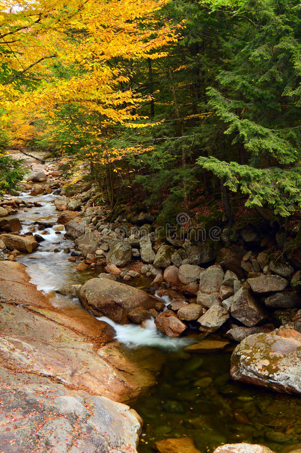 Autumn and the roaring brook stock photography