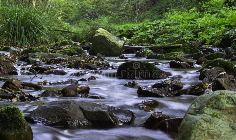 Autumn Rocky River, Croacia imagen de archivo