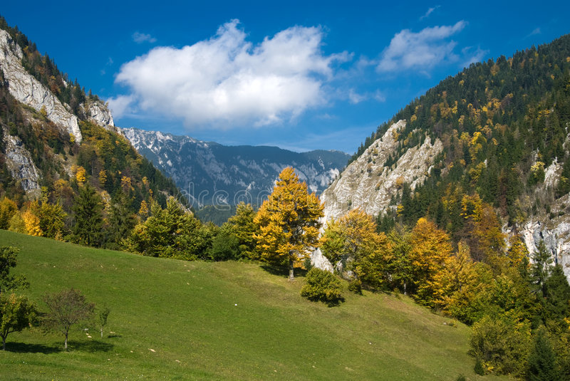 Autumn in Romania royalty free stock photography