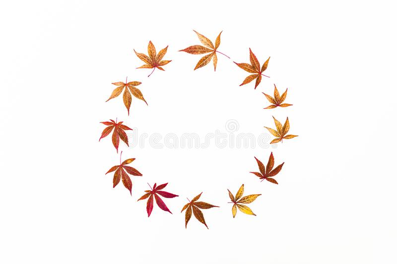 Autumn round frame of red fall tree leaves on white background. Flat lay, top view. Autumn round frame of red fall tree leaves on white background. Flat lay stock illustration