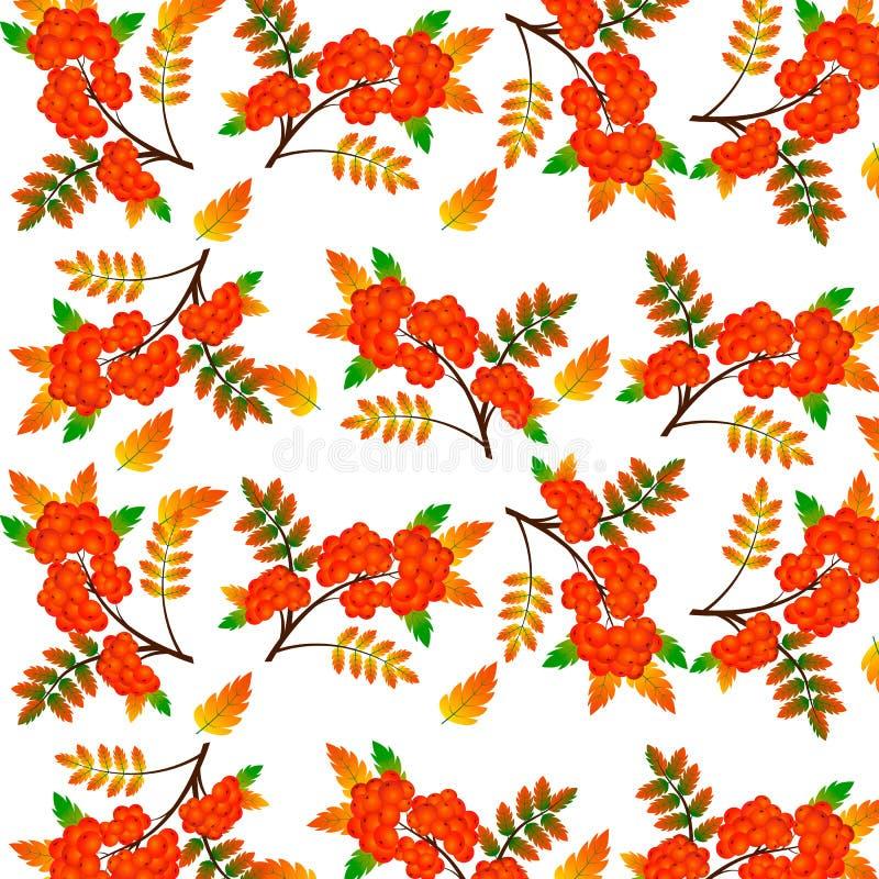 Autumn Rowan Berry Seamless Background Illustration de vecteur illustration de vecteur