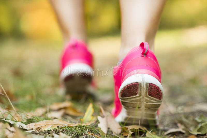 Autumn runner royalty free stock image