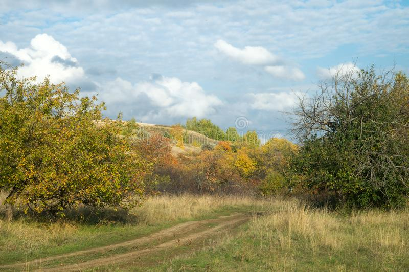 Autumn rural road in an old orchard under a picturesque cloudy blue sky. Russian nature lanscape royalty free stock image