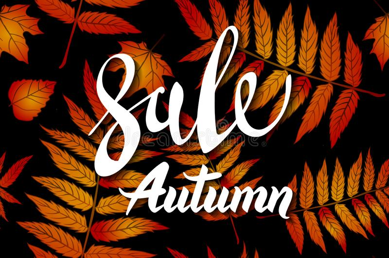 Autumn Sale Background anaranjado, caligrafía exhausta del otoño de la mano con las hojas que caen, la bandera de la web, la vent libre illustration