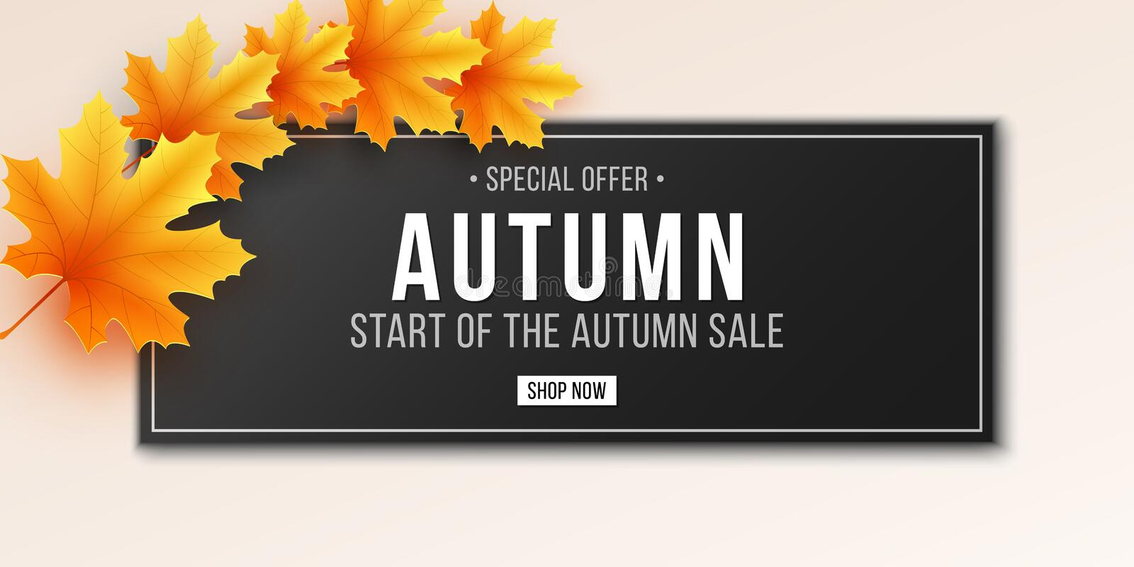 Autumn sale banner. Greeting card. Web banner with lettering. Seasonal poster with autumn leaves. Maple leaf. Seasonal sale. royalty free illustration