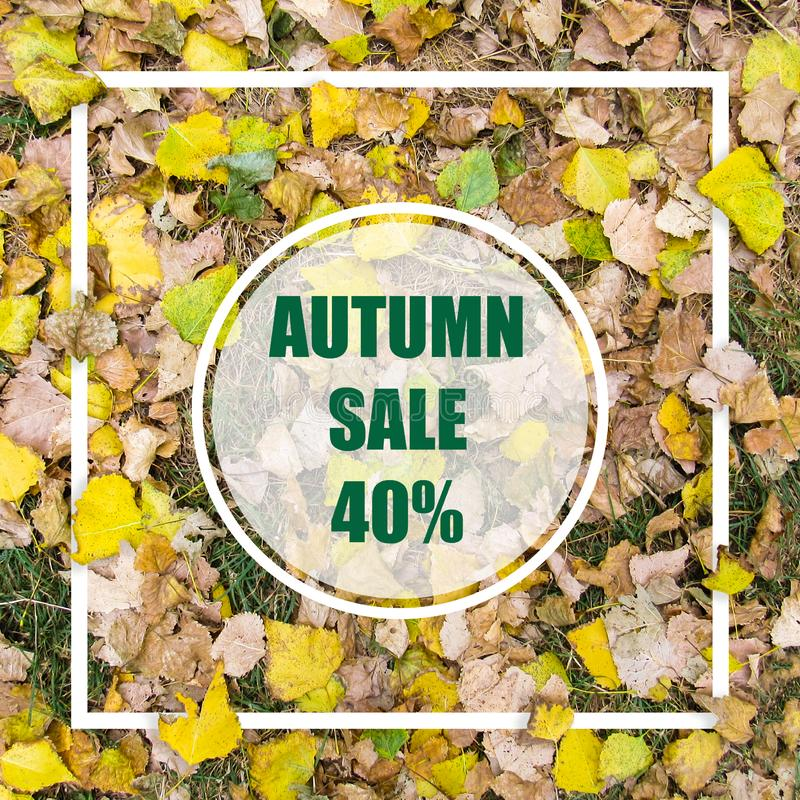 Autumn Sale 40%. Creative layout made with yellow leaves background, square frame. This is a blank for advertising card. Nature concept. Autumn poster stock photo