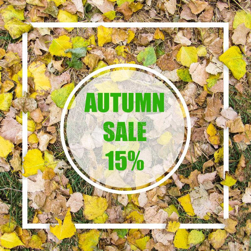 Autumn Sale 15%. Creative layout made with yellow leaves background, square frame. This is a blank for advertising card. Nature concept. Autumn poster stock image