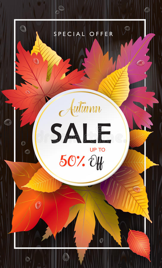Autumn Sale Fall leafs, wooden texture. Autumn Final Sale Vector. Fall leafs frame on wood table, top view. Fall season decoration for holiday design vector illustration