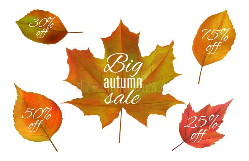 Autumn sale. Fall leaves banners. Realistic vector autumn leaf with sale prices. Yellow and red foliage isolated on. White background. Fall sale, autumn stock illustration
