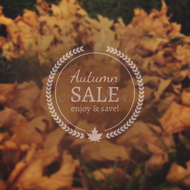 Autumn Sale Vector Banner sul fondo fotorealistico della sfuocatura di vettore fotografia stock