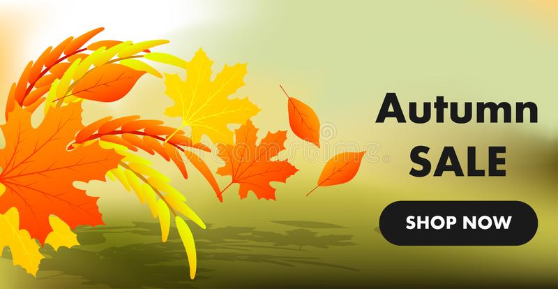 Autumn sale yellow fall leaves background. Colorful foliage nature element banner vector. Business retail abstract decoration. Space. Color poster blank vector illustration