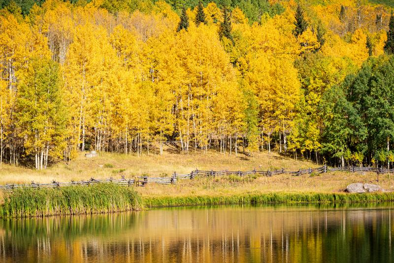 Autumn in the San Juan Mountains of Colorado. Aspen Trees With Shadows and Reflections on a Mountian Lake stock photo