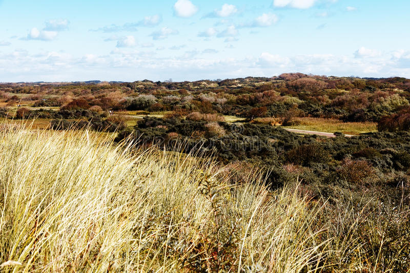 Download Autumn Sand Dune stock image. Image of clouds, nobody - 27080051