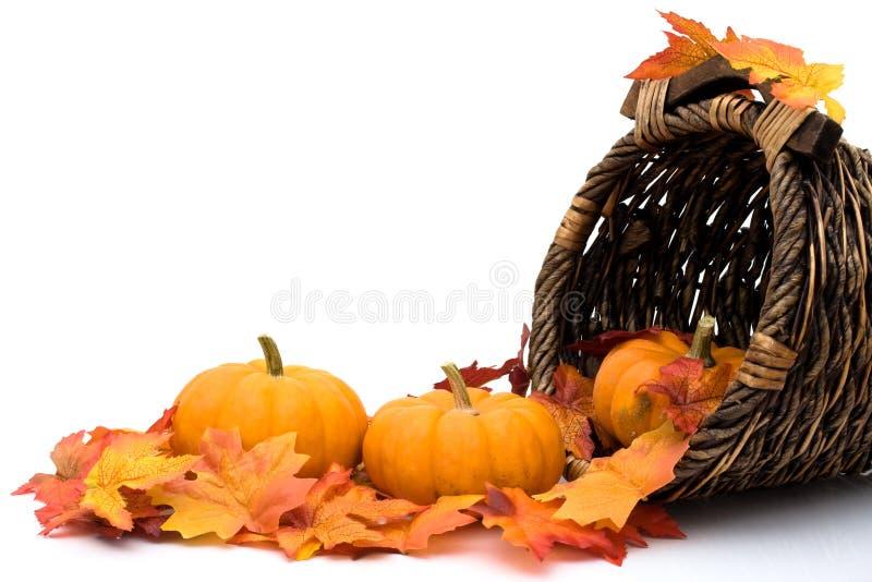 Download Autumn scene stock photo. Image of pumpkin, white, fall - 16082760