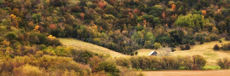 Autumn Scene - 1 royaltyfria foton