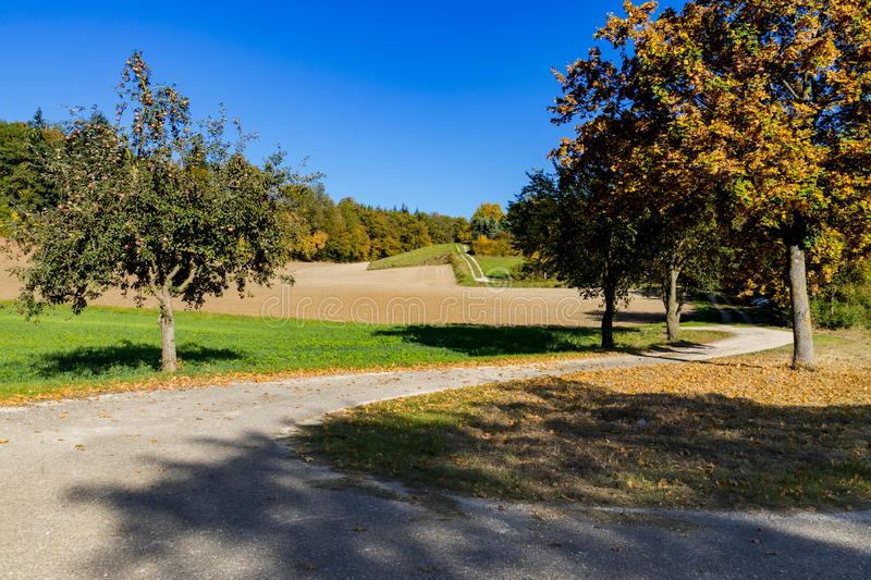 Autumn scene on the route called Romantic Road, Germany. Autumn scene with brown trees, evening sun and hiking path along the meadows of touristic route called stock photo