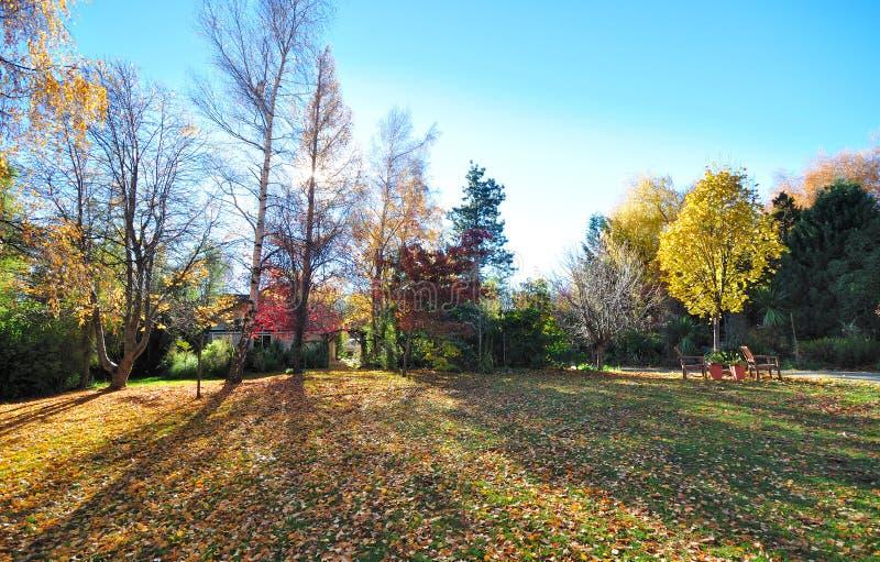 Autumn Scene em Nova Zelândia fotos de stock