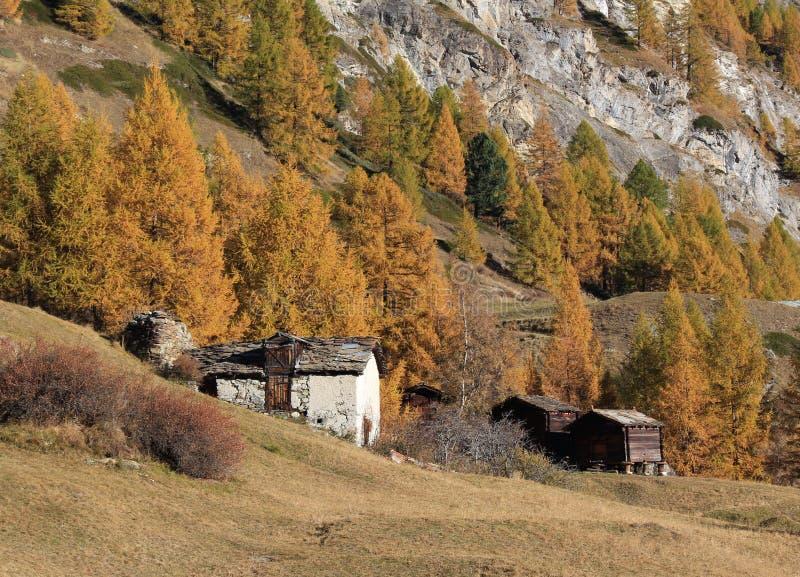 Autumn scene in Wallis Canton stock photos