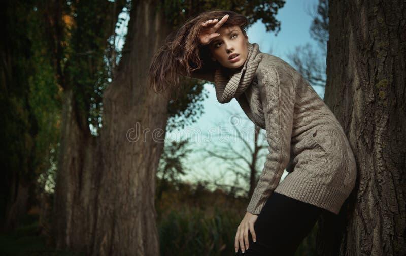Download Autumn scenery stock image. Image of fresh, background - 16542057