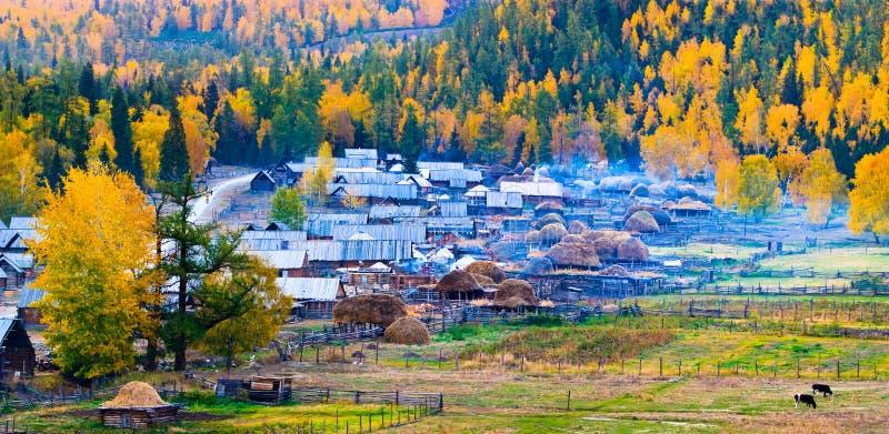 Download Autumn Scenery, Baihaba Village, Xinjiang China Royalty Free Stock Image - Image: 21417236